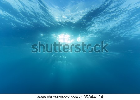 underwater with sunshine - stock photo