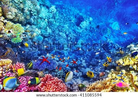 Underwater world with corals and tropical fish. - stock photo