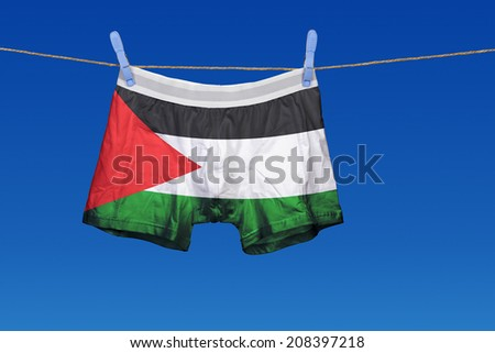 Underwear with the Palestine flag on a string against clear blue sky - stock photo