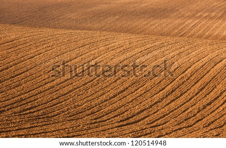Undulating agricultural field after harvest of weak textured tracks tractor wheels - stock photo