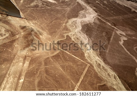 Unesco Heritage: Lines and Geoglyphs of Nazca, Peru - Whale