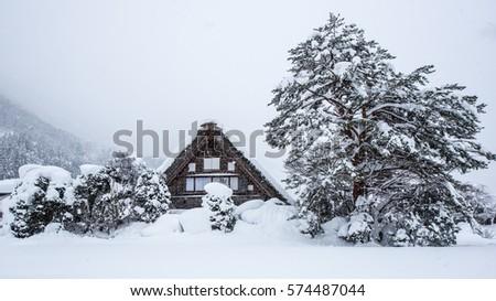 Winter Holidays - TMGS