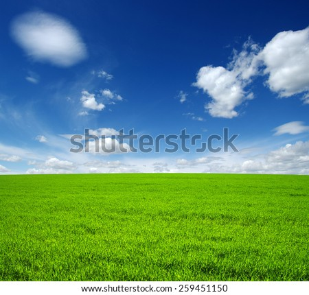 unfocused field of green grass and sky - stock photo