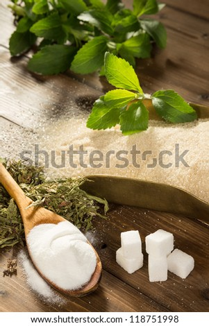 Unhealthy sugar on a wooden table together with natural sweetener stevia in powder, dried and fresh form - stock photo