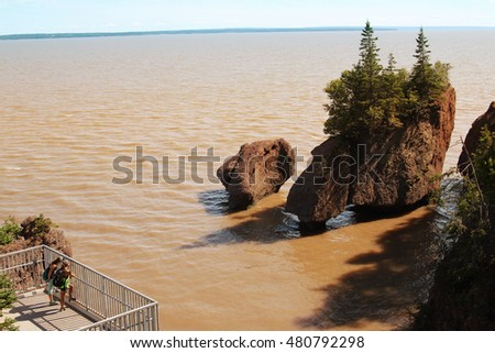Unidentidies Backpackers on a platform  viewing  Hopewell Rocks in the Bay of Fundy, New Brunswick, Canada in the muddy water at high tide