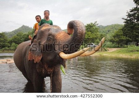 Unidentified many children riding on elephant in the forest at Kanchanaburi province in Thailand on May 24, 2015,