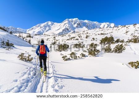 Unidentified ski tourer on winter trail in Rohace valley, Tatra Mountains, Slovakia - stock photo