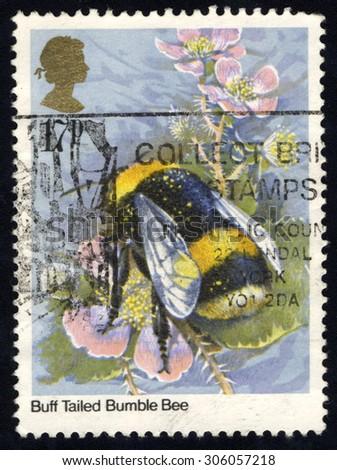 UNITED KINGDOM - CIRCA 1985: A stamp printed in the United Kingdom shows Bumblebee, circa 1985 - stock photo