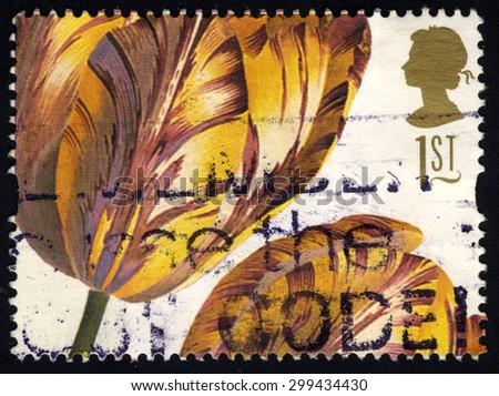 UNITED KINGDOM - CIRCA 1997: A stamp printed in United Kingdom shows 19th Century Flower Painting, Tulipa (Ehret) , circa 1997 - stock photo