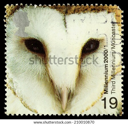 UNITED KINGDOM - CIRCA 2000: A used postage stamp printed in Britain showing a Barn Owl - stock photo