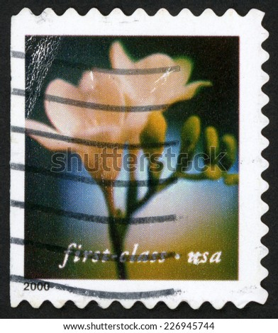 UNITED STATES OF AMERICA - CIRCA 2000: first class post stamp printed in USA (US) shows freesia flower; winter park Florida; Scott 3456 A2683 white green, circa 2000 - stock photo
