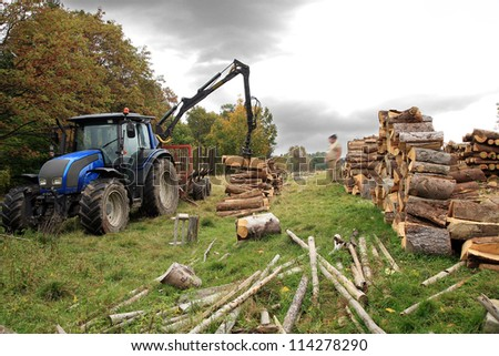 Unloading firewood. Winter fuel supplies to villages in the mountains. Autumn works. - stock photo