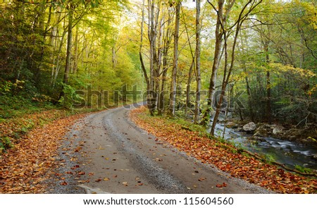 Unpaved road in Tremont, the great smokey mountains national park. Autum colors with a cascading stream and fallen leaves - stock photo
