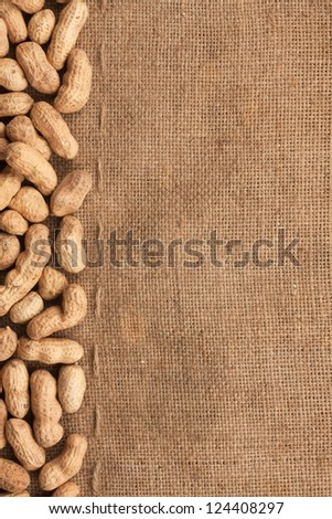 unpeeled peanuts lying on burlap can be used as background