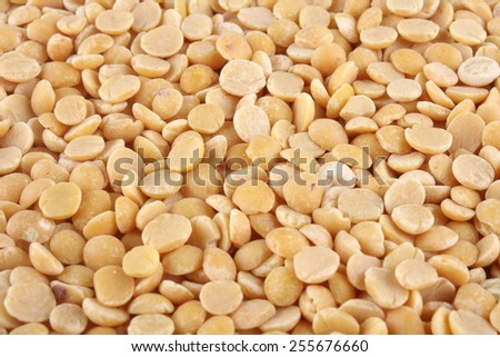 Unpolished Toor dal, famous Indian legume also called yellow Pigeon peas. Selective focus. - stock photo