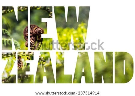 Unravelling fern frond closeup, one of New Zealand symbols - stock photo