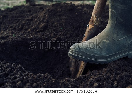Unrecognizable man digs a hole by shovel in garden - stock photo