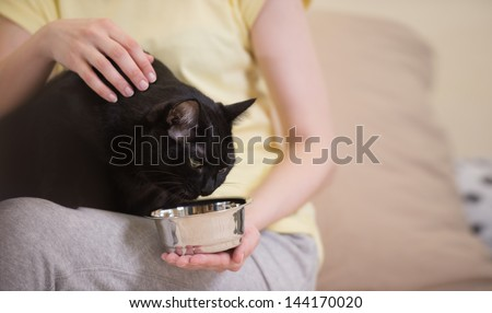 Unrecognizable woman feeding her black cat at home - stock photo
