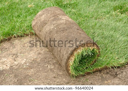 Unrolling Sod for a New Lawn - stock photo