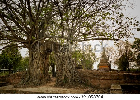 Unseen Thailand,Historic old city of Thailand, Wat Phra Ngam, Ayutthaya,Thailand, Flare light from the sun shines in the sunset