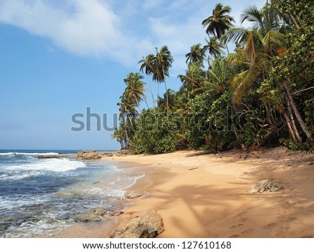 Unspoiled tropical beach with lush vegetation and a shade of a coconut tree on the sand - stock photo