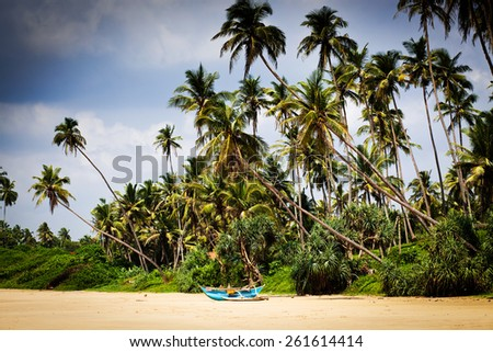 Untouched tropical beach in Sri Lanka - stock photo