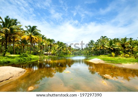 Untouched tropical beach with Coconut Palm Trees - stock photo
