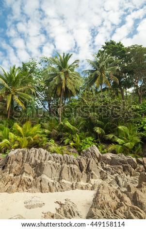 Untouched tropical coast in Phuket - stock photo