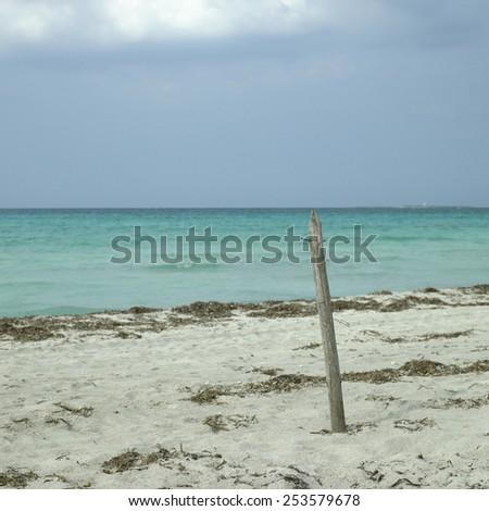 Untroubled beach and green ocean - stock photo