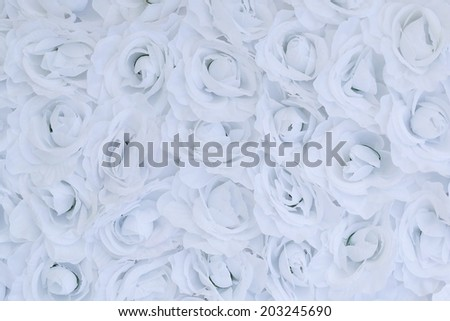 Unusual abstract white flowers tender background  texture - stock photo