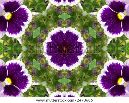 Unusual background with bright Pansies kaleidoscope . - stock photo