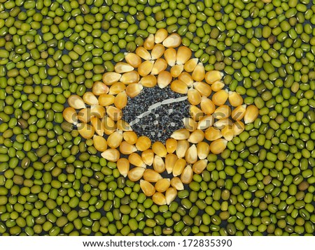 Unusual Brazil flag made of food and condiments - stock photo