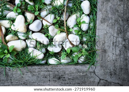 unusual texture of grass and stones - stock photo