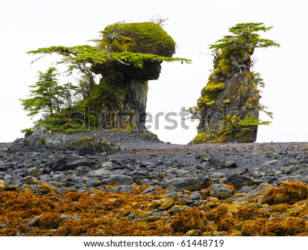 Unusual tidal formations near Sitka, Alaska - erosion above high tide - stock photo