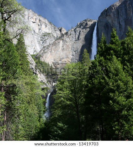Upper and Lower Yosemite Fall framed by Spring Trees