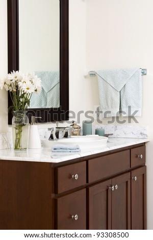 Upscale Bathroom Vanity