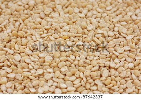 urad dal, skinned and split black gram - stock photo