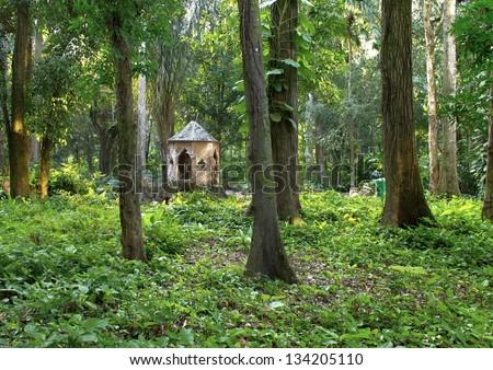 URBAN FOREST PARK - HUT CLAY - CULTURAL TOURISM AND ECOLOGICAL - CITY OF RIO DE JANEIRO - stock photo