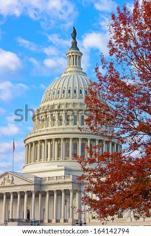 US Capitol building at dawn in autumn colors - stock photo