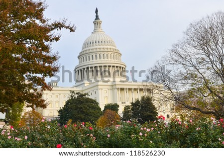 US Capitol Building in Autumn - Washington DC United States