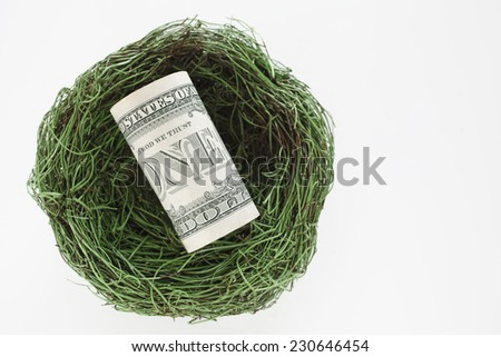 US currency, money, nest - stock photo