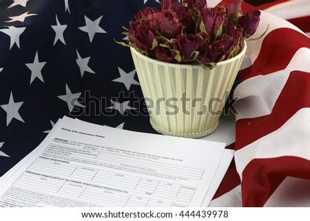 US flag rose flower - stock photo