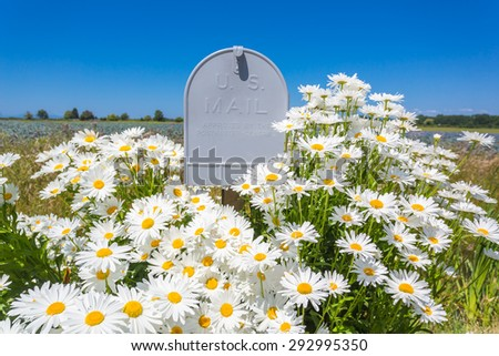 mailbox flowers stock images royalty free images. Black Bedroom Furniture Sets. Home Design Ideas