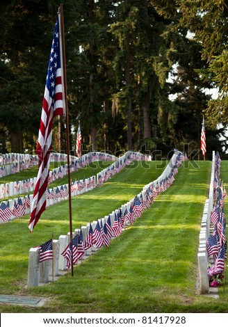 US Military Cemetery flying the US flags - stock photo