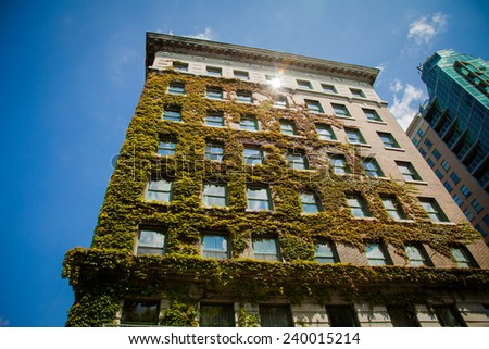 Usa Apartments. Good life in old building covered with ivy - stock photo