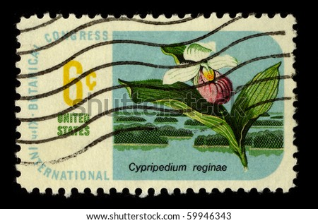 USA - CIRCA 1983: A stamp printed in USA shows image of the dedicated to the Flower Cypripedium Reginae circa 1983.