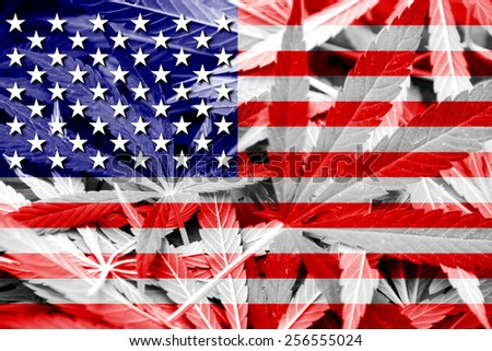 USA Flag on cannabis background. Drug policy. Legalization of marijuana - stock photo