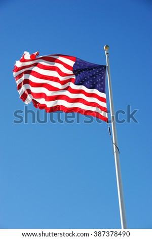 USA flags waving in the wind