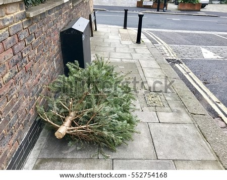 Dead Christmas Tree Stock Images, Royalty-Free Images & Vectors ...