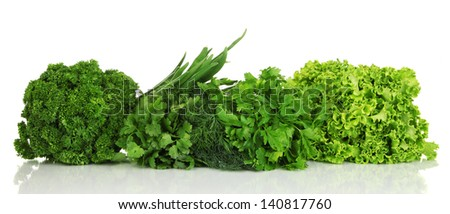 Useful herbs isolated on white - stock photo
